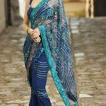 Indian Sari With Short Back Blouse Collection 2013-14 For Women