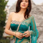Indian Sari With Short Back Blouse Collection 2013-14 For Women (5)