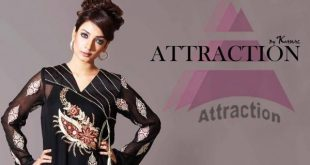 Attraction by Kamal Winter Formal Dresses 2013-2014 For Girls (2)