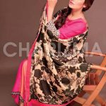 Charizma unique winter dresses for women 2013 (3)