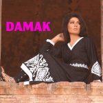 Damak Stylish Winter Dresses Collection 2013-14 For Women (4)