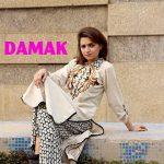 Damak Stylish Winter Dresses Collection 2013-14 For Women (5)