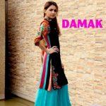 Damak Trendy Winter Collection 2013-14 for Women (3)