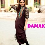 Damak Trendy Winter Collection 2013-14 for Women (7)