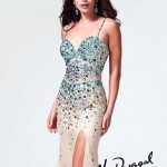 Mac Duggal Famous Prom Dresses Collection 2013 For Brides (3)