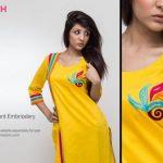 Pinkstich Pakistani Casual Wear Winter Fall Dresses 2013-14 For Women (1)