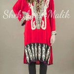 Trendy Embroidery Shirts 2013 Winter Collection by Shehrbano Malik (3)