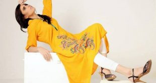 Azleena Faisal Winter Dresses Collection 2013-14 For Women (6)