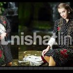 Nisha Fabrics New Winter Dresses Collection 2013-14 For Women (3)