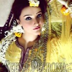 Bridal Dresses 2014 By Seena Peerona (1)