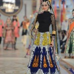 Designer Ali Xeeshan Stytlish Bridal Wear Collection 2014 for Women (3)