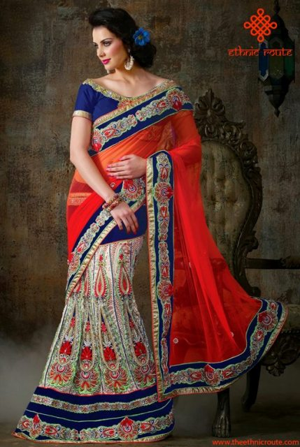 Ethnic Route Bollywood Saree Designs 2014 For Women (3)