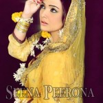 Seena Peerona Exclusive Bridal Dresses Collection 2014 For Women (1)