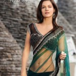 Saree with Gorgeous Backless Blouse