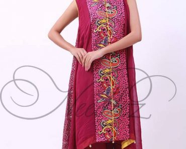 Needlez By Shalimar Winter Wear Dresses 2014 For Women (3)