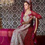 Pakistani Full Sleeve Wedding Dresses 2014 For Women (1)