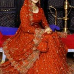 Pakistani Full Sleeve Wedding Dresses 2014 For Women (2)