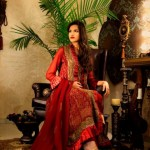 Pakistani Stylish Wedding Dresses Winter 2014 For Women (1)