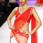 Indian Short and Backless Blouse Sari 2014 (3)