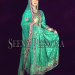 Bridal Dresses 2014 By Seena Peerona