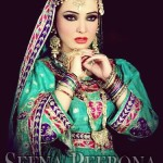 Seena Peerona Exclusive Bridal Dresses Collection 2014 For Women (5)