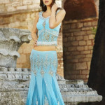 Indian Short and Backless Blouse Sari 2014 (1)