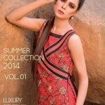 Motifz Exclusive Summer Spring Women wear dresses 2014 for Party Festives (2)