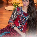 Zam Zam Chiffon Exclusive Lawn Dresses Collection 2014 for Women (1)