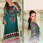 Zam Zam Chiffon Exclusive Lawn Dresses Collection 2014 for Women (5)