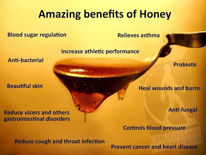 Everything you need to know about honey