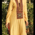 Dicha Kurti styles 2014 for women