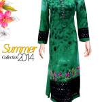 Meeshan Ladies Collection 2014