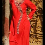 Dicha Kurti Style 2014 collection for women