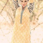 Latest Dresses 2014 for women