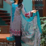 Zeniya new lawn designs 2014
