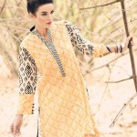Cynosure collection 2014 for women