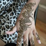 Styish New Mehndi Designs 2014 for Girls (1)