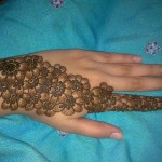 Styish New Mehndi Designs 2014 for Girls (7)