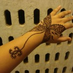 Styish Pakistani Hand Mehndi Designs 2014 for Girls (2)