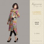 Kayseria Latest Eid Ul Azha Pret dresses Collection 2014 for women (2)