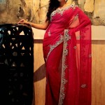 latest saree collection 2014-2015, latest saree for Pakistani girls, Latest saree for Indian girls, latest saree collection,Pakistani saree design, Indian saree design,Pakistani saree,