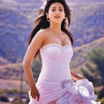 Actress Shruti Hassan sarees dress designs