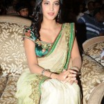 Indian Actress Shruti Hassan Bollywood Dresses