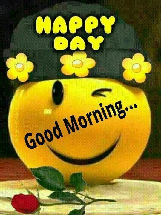 Good Morning Happy Sunday Thoughts : Good morning happy sunday wishes picture image photo