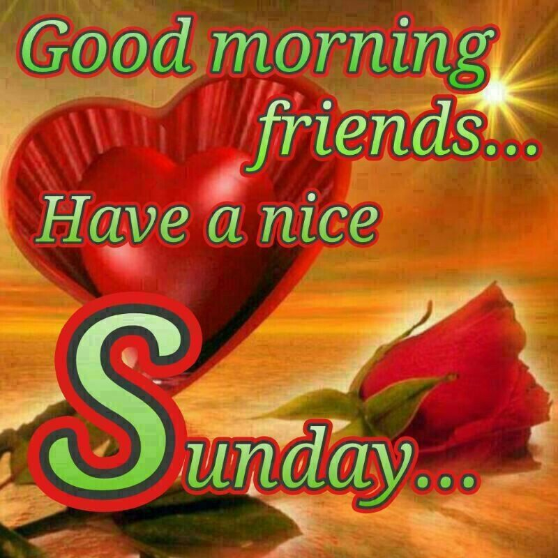 Good Morning And Happy Sunday Love Message : Good morning happy sunday wishes picture image photo