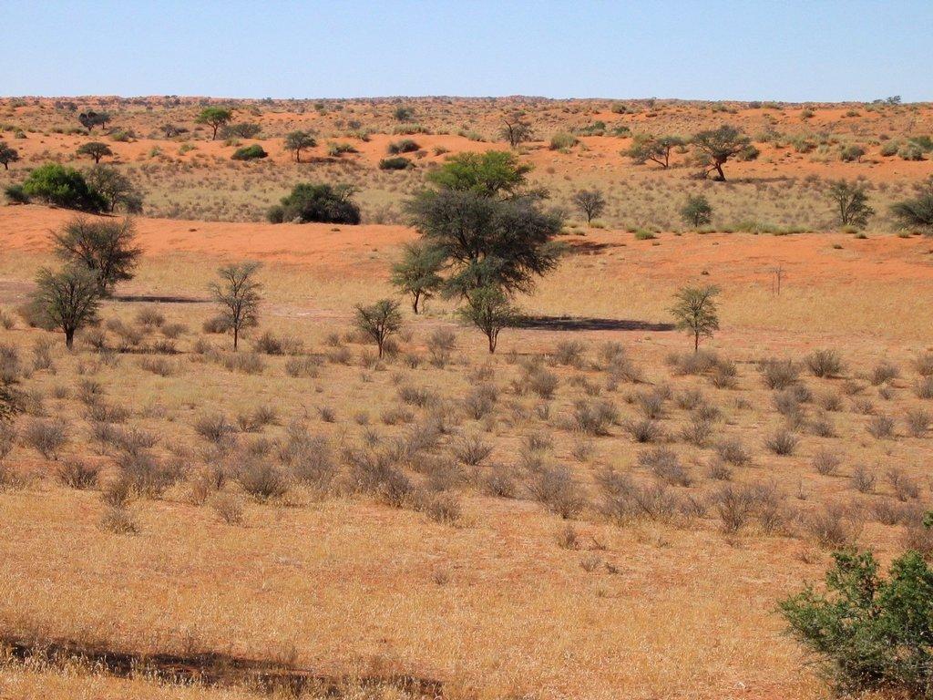Popular Top Ten Largest African Desert